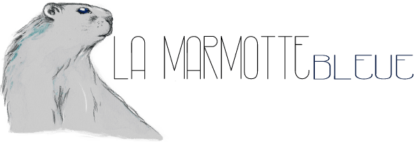 marmotte-bleue illustration logo by NephilimK